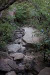 Path through the landslide