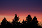 Corvallis 02-01-2009
